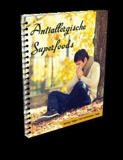 13_Ringbuch